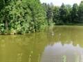 2. rybník